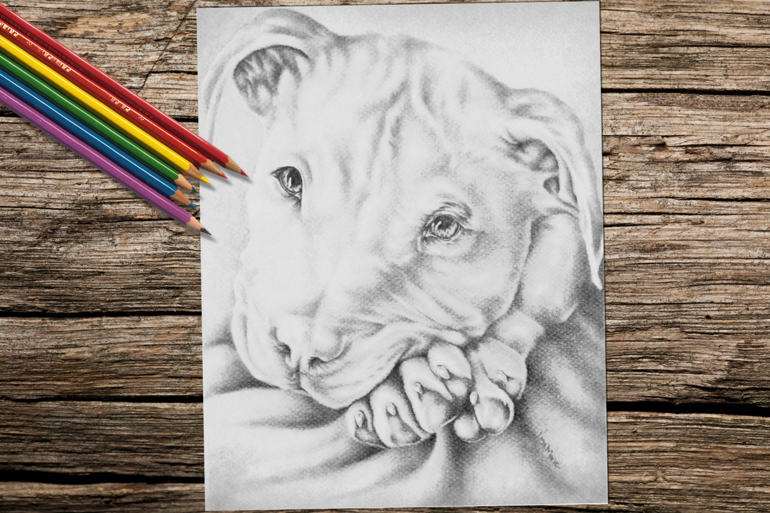 Coloring Book page, Coloring Pages, Instant download coloring, Pit ...