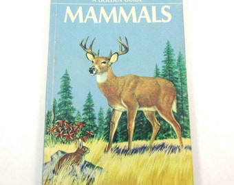 Mammals A Guide to Familiar American Species Vintage 1950s Guide Book with Fabulous Illustrations
