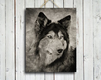 Wolf's Portrait - Wolf photography - Wolf dog - Wolf photograph - Native American style art- black and white wolf photo -wolf art
