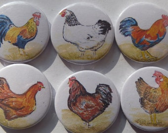 """Refrigerator Magnets """"Poultry"""""""