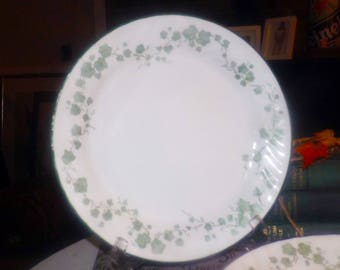 Vintage (1995) Corelle Corning USA Callaway large dinner plate. Green leaves | ivy, scalloped, green rim, swirled verge.