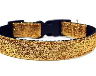 """Gold Dog Collar 1"""" Gold Glitter Dog Collar"""