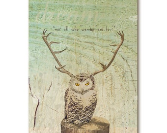 """Owl with antlers art print on wood with quote """"Not All Who Wander Are Lost"""""""