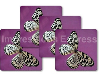 White Butterfly Square Coasters - Set of 4