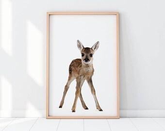Roe Deer, Baby Deer, Deer, Deer Artwork, Deer Art, Deer Printable, Capreolus Capreolus, Nursery, Nursery Decor, Nursery Room, Baby Room