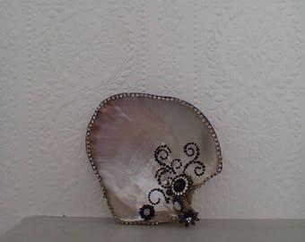 Jewel Clam Shell