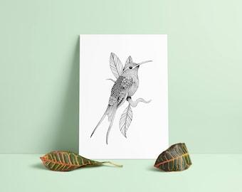 Hummingbird print A4 wall art, black and white, dotwork, interior wall art, nature print