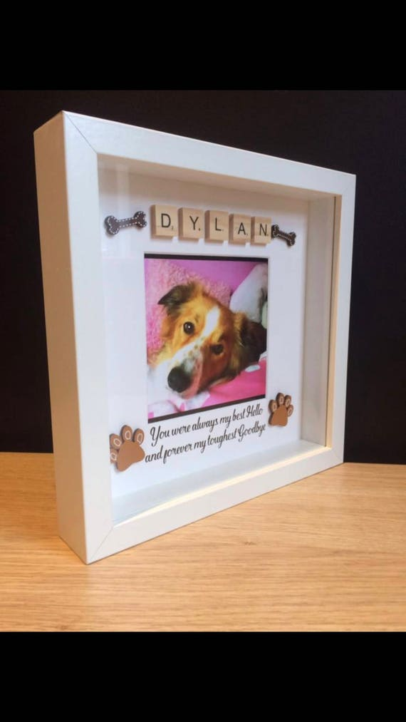 Pet Loss Memory Box Frames Angel Pets Forever Memories