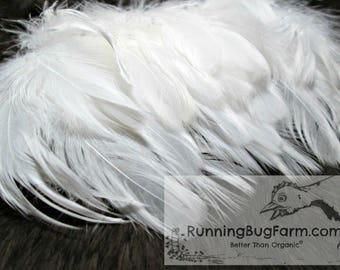 White Feathers Cruelty Free Feathers Real Feathers Craft Feathers Loose Feathers Natural Feathers Real Bird Feathers For Crafts 20 4-4.5""