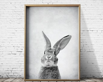 Gray Rabbit Art Bunny Printable Art Print Download Animal Print Nursery Print Rabbit Poster