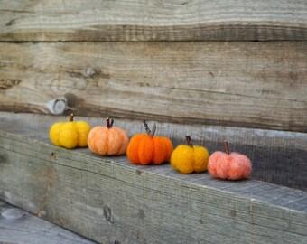 Felted pumpkins Tiny pumpkins Thanksgiving set of 5 Orandge pumpkins Baby shower favor Halloween decor Rustic Home decoration