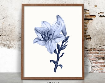 Blue Botanical Lily Lilies Flower Print, Printable Digital Download, Country Cottage Decor, Vintage Illustration Wall Art, Indigo, Navy