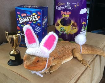 Bearded dragon Easter Bunny costume dressing up outfit