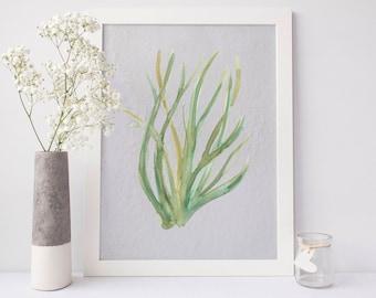 Seaweed Art Print, Beach Art Prints, Beach Artwork, Digital Downloads, Coastal Print, Seaweed Watercolor, Plant Life Decor, Ocean Botanicals