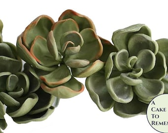 "Three 3"" wired gumpaste succulents with rounded tips for cake decorating, wedding cake toppers, or autumn cake topper"