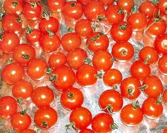 Tomato - Cherry Gardeners Delight  - 100 Seeds - Lycoperscion Esculentum