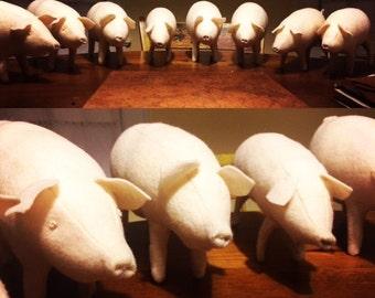 10 pig package