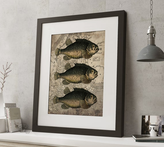 FRAMED Vintage Map Fish Print 20x16 Black or