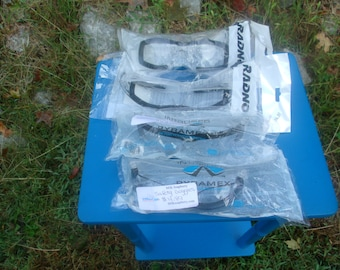 Radnor/Pyramex Safety Glasses W/Foam Edges-Set of 4