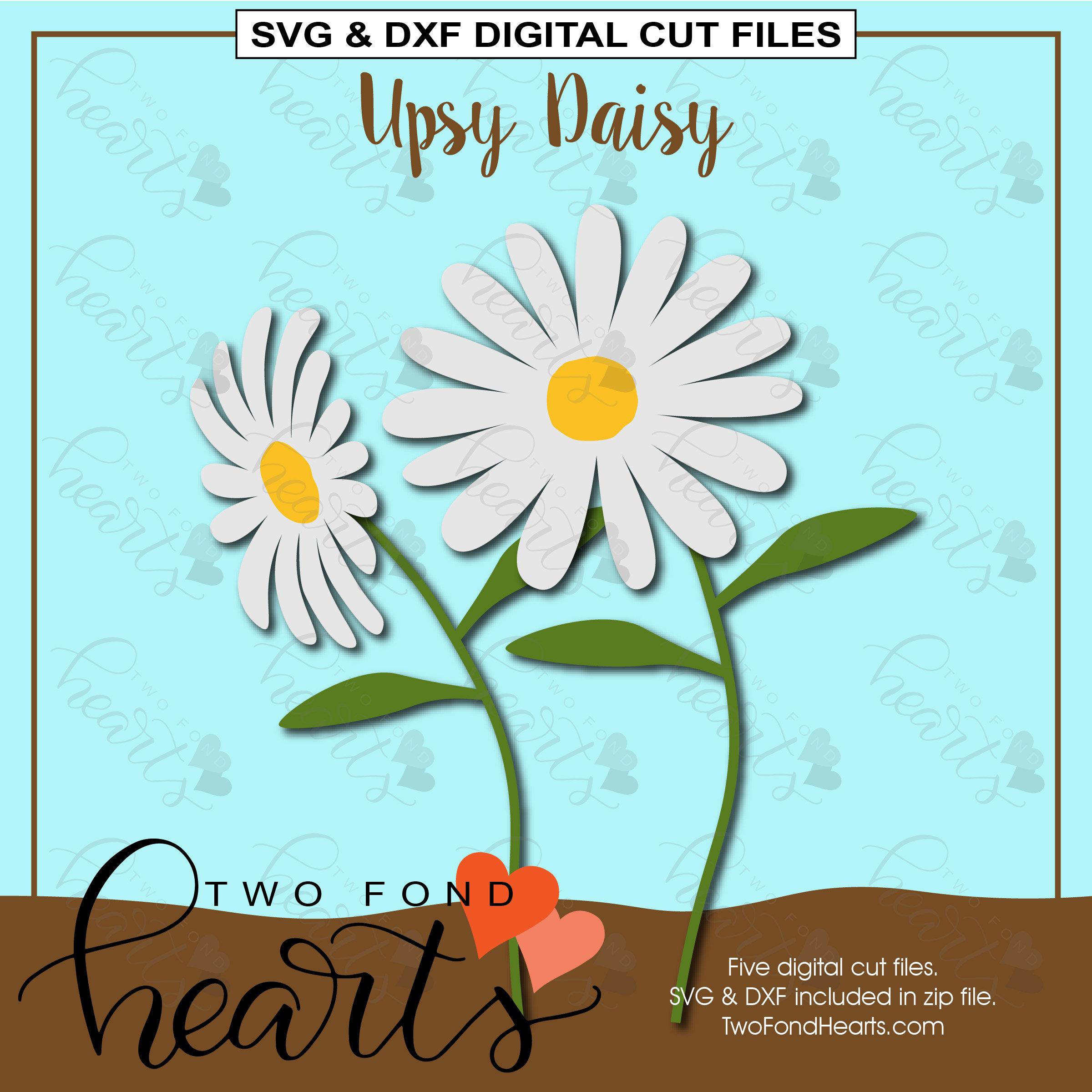 Daisies Svg Dxf Daisy Cut File Flower Svg Daisy Die Cut