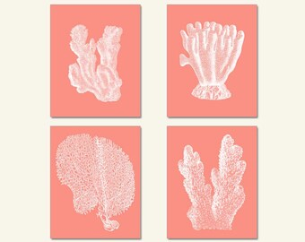 Pink Coral, Sea Coral Art, Sea Coral, Print Set four prints Coral Wall Art, Coral Print, Sealife print , Pink Coral