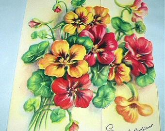 Congratulations Unused Vintage Flowers Greeting Card Beautiful Nasturtiums Flowers Beautiful Foldout Cutout Art Card