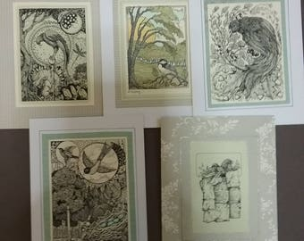 Pen and ink card 5drawings of birds  in garden and forest setting.