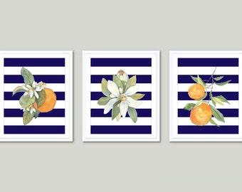 Oranges Art Prints - Orange Fruit Wall Art - Watercolor Orange Prints - Kitchen Art - Kitchen Decor - Set of 3 Prints - Aldari Art