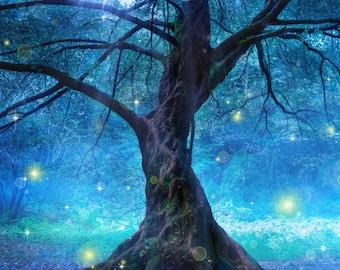 Enchanted Tree Photography Backdrop (FAN-AD-002)