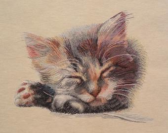 Fabric Panel tapestry kitten sleeping coupon