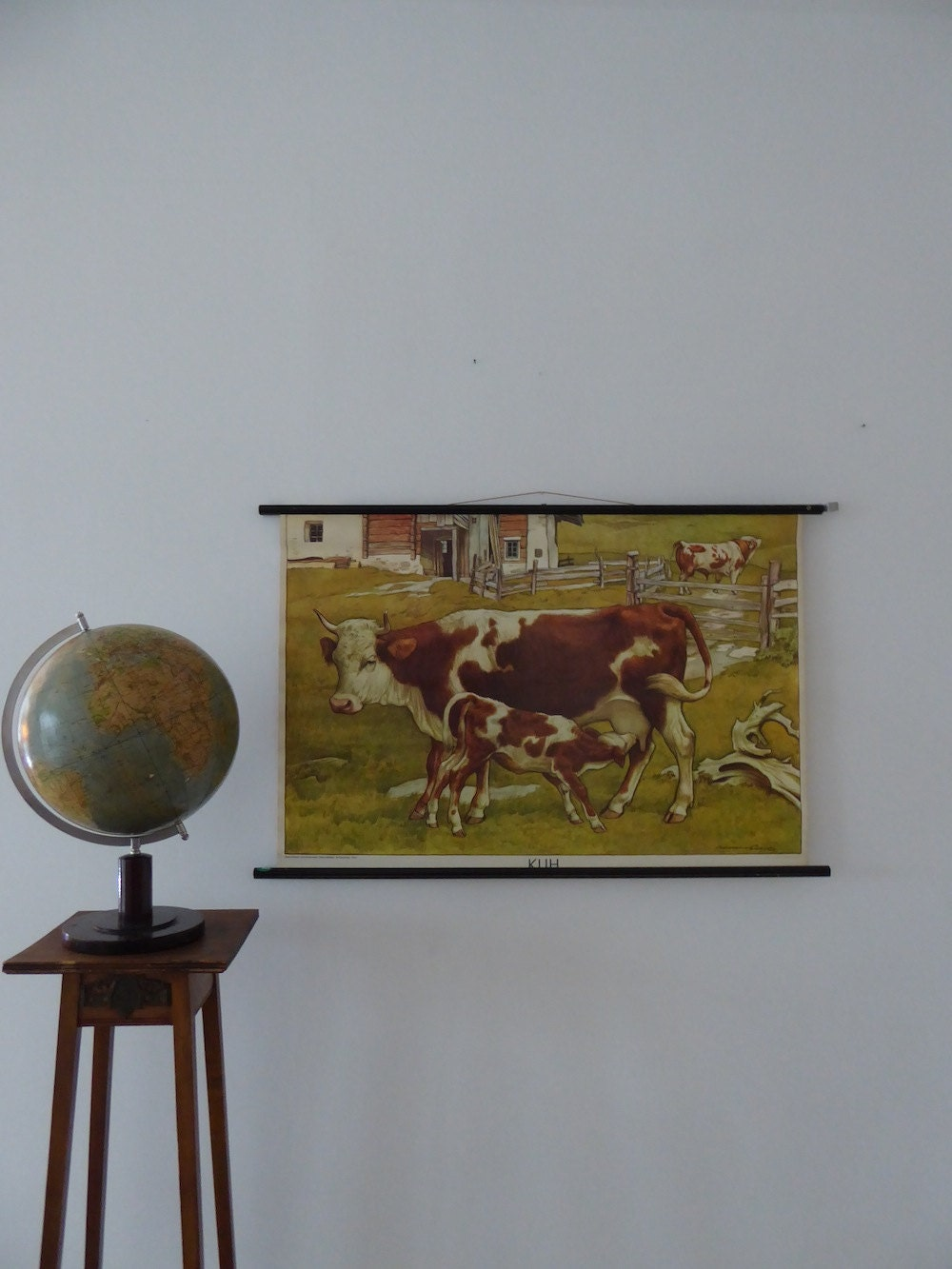 MId Century Original Vintage Cows and Calf Pull Down Chart
