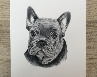 French Bulldog puppy limited edtion print