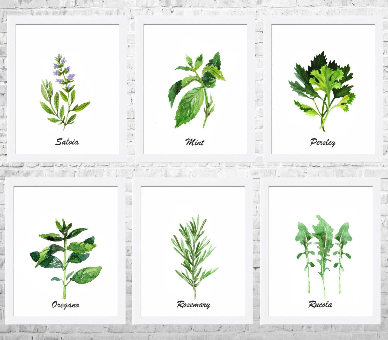 Kräuter-Aquarell Küche Wand Kunst Set aus 6 Drucke Küche