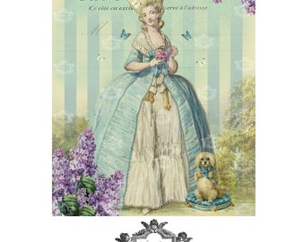 Lilas au printemps, a Wickedly Lovely,Marie Antoinette inspired blank Art greeting card.