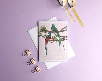 Rare Bird Greeting Card // Quetzal Card // Card for Her // Thinking of You Card // Thank You Card // Tropical Bird Card