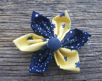 Yellow stars, flower, dog collar flower, small