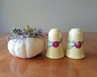 Coors pottery; vintage salt and pepper shakers,  Rosebud