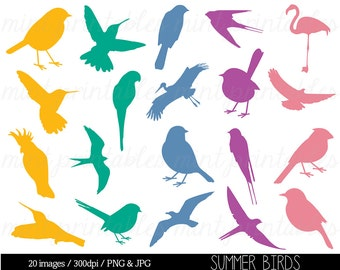 Bird Clipart Clip art, Bird Silhouette Clipart, Colored bird, animal clipart, swallow, sparrow - Commercial & Personal - BUY 2 GET 1 FREE!