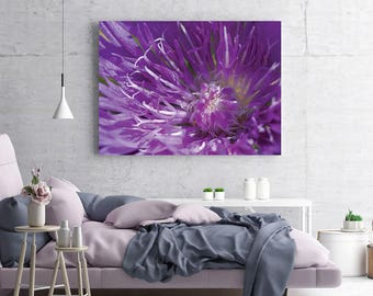 Flower Wall Art, Purple Flower Photo Print, Nature Wall Decor, Macro Nature Photography, Interior Wall Decor, Mother's Day Gift