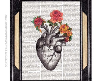 ANATOMICAL HEART art print wall decor illustration vintage roses old dictionary book page love wedding anniversary human anatomy 8x10, 5x7