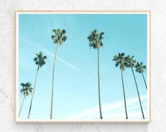 Palm Tree Print, Beach Decor, Tropical Wall Art, Hawaii, California, Contemporary Photography, Coastal, Modern Minimalist Printable Download