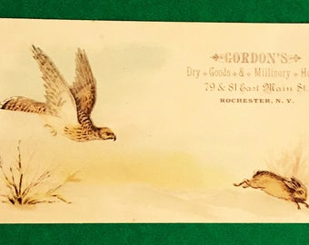 Victorian Trade Card 1800s, Colorful Hawk On Hunt For Rabbit Prey, Gordons Dry Goods And Millinery, Antique Paper Collectible