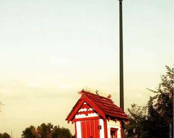 Quirky Funny Outhouse On Wheels Photo - 5x7 Photo of Silly Outhouse - Music Note Door - Red and White Tiny Building - Fresh Americana Photo