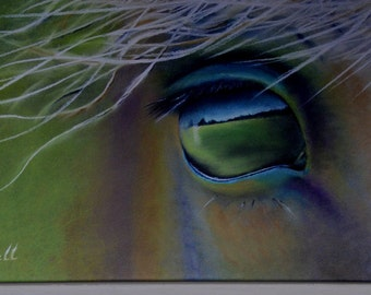 "DEPOSIT ONLY for the ""I See You"" Mounted Canvas Print"