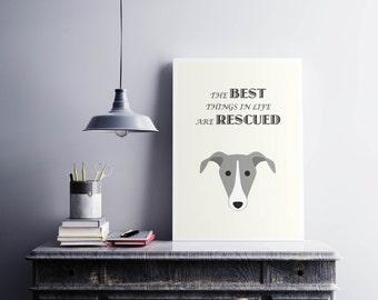 Greyhound Print, Dog Print, Dog Art, Dog Poster