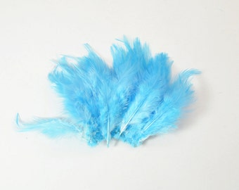 Rooster Saddle Feathers - Pool Blue, 2 inch strip (50-60pcs)