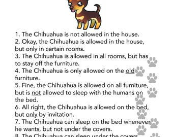 Chihuahua House Rules Photo