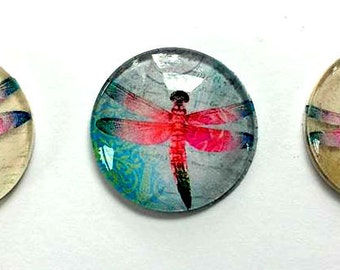 Magnets - Dragonflies - Magnet - Set of 3 - 1 Inch Domed Glass Circles - Free U.S. Shipping - Gift for Mom, Sister