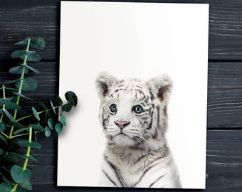 Baby White Tiger Print, Animal prints, PRINTABLE ART, Jungle animals, Nursery art, Baby animal nursery, The Crown Prints, Nursery animals