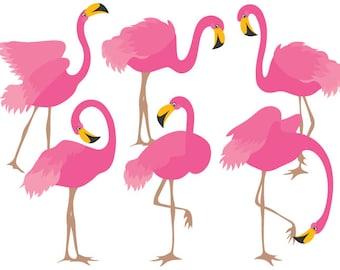 Flamingo Clipart - Digital Vector Flamingo, Bird, Exotic, Flamingo, Pink Flamingo Clip Art